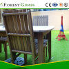 Luxury Competitive Artificial Turf Dogs (CS)