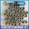 High Temperature Molybdenum Bolts, Moly Nuts, Mo Screws