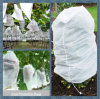 Biodegradable PP Nonwoven Fabric for Agricultural Fruit Tree Covers