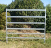 OEM Customied Oval Galvanized Farm Used Horse Panel