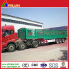 Tri- Axles Fenced Semi Trailer for Livestock / Cow / Cattle Transportation