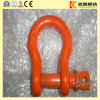 Crew Pin Anchor Shackle/Clevis Shackle with Good Price