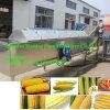 Vegetable Blanching Machine/Vegetable Process Machine/Corn Blanching Machine
