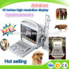 Veterinary Portable Color Doppler Ultrasound Machine/Dog Cat Cow Use Doppler Function Ultrasound Device