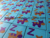 En1177 Approvaled Colorful Kindergarten Playground Rubber Tiles