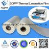 Hot Melt Adhesive BOPP Thermal Lamination Protective Film