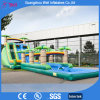 2017 New Big Inflatable Water Slide with Pool for Amusement Park