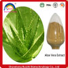 Lyphar Supply Best Quality 95% Aloe Emodin Hot Sell