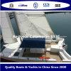 Bestyear Catamaran S33c