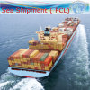 Consolidation & Warehousing Service, Sea Shipping (FCL 20′′40′′)