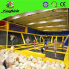 Big Size Air Trampoline Park with Foam Pit (1426W)