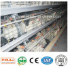 Poultry Layer Cage System with Automatic Machine