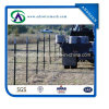 8ft Long Steel Fence T Post for America Market
