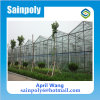 Easilly Installed Glass Multi-Span Greenhouse for Sale