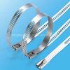 Acid-Control Ladder Multi Barb Stainless Steel Cable Tie