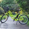 Beach Cruiser Electric Bikes for Sale of Lady Style
