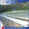 Hot Galvanized High Quality 3&4 Tier Layer Chicken Cage