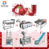 Pomegranate Passionfruit Production Juice Making Line