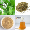 GMP Certified Ginkgo Biloba Leaf Extract