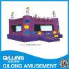 Amusement Park Inflatable Castle (QL-D067)