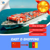Container Sea Freight Shipping Serivice From China to Cameroon
