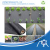UV Treated Nonwoven for Landscape, Agriculture Cover