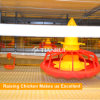 Conveyor Belt Chicken Cage Manure Removal Machine for Broiler Cage