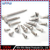 Fastener Metal Stainless Steel Cap Wood Furniture Roofing Screws