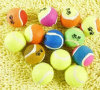 Lovely Squeaky Colorful Pet Tennis Ball