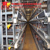 Henan Jinfeng Design Poultry Farming Equipment Egg Chicken Cage