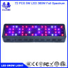 Glebe 100W-1000W LED Grow Light Full Spectrum for Indoor Plants Veg and Flower