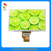 9.0-Inch Sunlight Readable IPS 1280 (RGB) X720p LCD Display with Full Viewing Angle