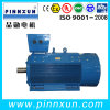 Hot Sales! Y2 Series 110kw Electromotor
