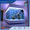 100mm Cast Acrylic Sheet of Fish Tank