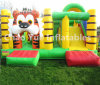 Colorful Inflatable Bouncy Castle, Jumping Castles with Slide (CY-M2073)