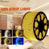 5050 12V/220V Flexible LED Strip Light