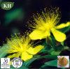 Fructus Forsythiae Extract -Phillyrin