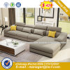 Leather Home Sofa Wooden Frame Office Sofa (HX-8NR2248)