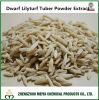 Chinese Herbal Medicine Dwarf Lilyturf Tuber Powder Extract Ophiopogon Japonicus L.