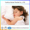 Color Waterproof Mattress Protector Amazon Hot Selling