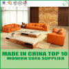 Furniture Office Genuine Leather Sofa Bed