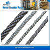 Hot Sale Steel Wire Rope for Speed Governor