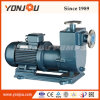 Dosing Leakless Magnetic Driven Chemical Pump