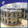 Duplex Roller Chain with Straight Plate