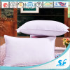 Super Soft Egypt Cotton Down Pillow/Down Cushion