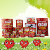 Organic 800g Canned Tomato Paste From China