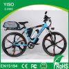 China Guangzhou New Magnesium Electric Hybrid Bicycle with Pedals