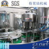 2500-3000bph Pet Bottle Mineral Water Filling Machine