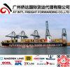 Global Sea Freight to Rwanda From China