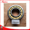 Terex Bearing (07451617) for Terex Dumper Part